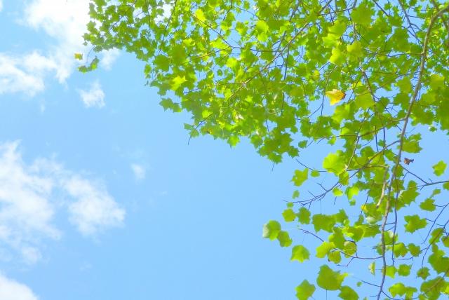 青空のイメージ画像